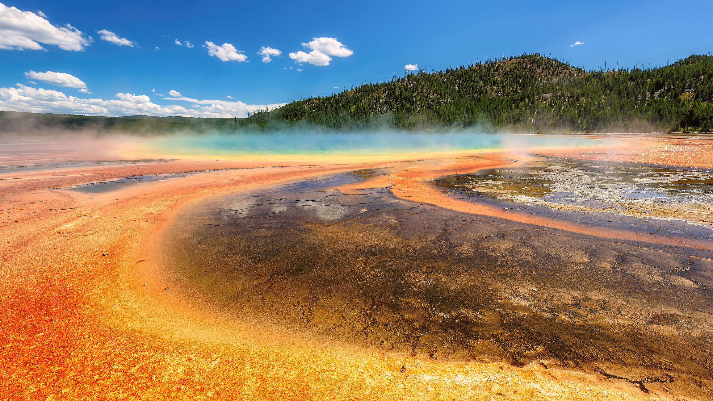 Thermal pool Grand Prismatic Spring in Yellowstone